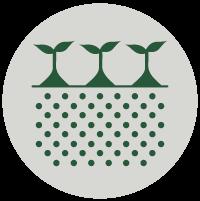 picto structure du sol